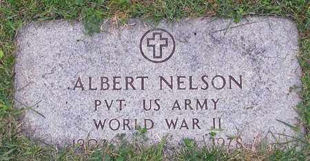 NELSON, ALBERT - Barnes County, North Dakota | ALBERT NELSON - North Dakota Gravestone Photos