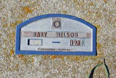 NELSON, BABY - Barnes County, North Dakota | BABY NELSON - North Dakota Gravestone Photos