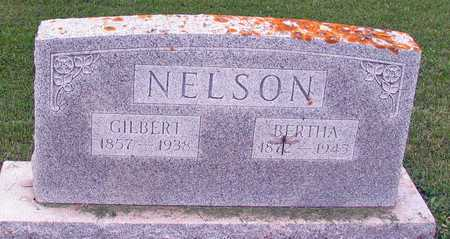 NELSON, BERTHA - Barnes County, North Dakota | BERTHA NELSON - North Dakota Gravestone Photos