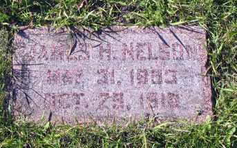 NELSON, JAMES H. - Barnes County, North Dakota | JAMES H. NELSON - North Dakota Gravestone Photos