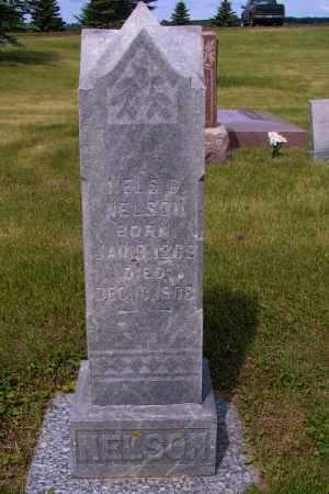 NELSON, NELS E. - Barnes County, North Dakota | NELS E. NELSON - North Dakota Gravestone Photos