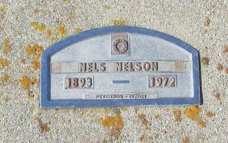 NELSON, NELS - Barnes County, North Dakota   NELS NELSON - North Dakota Gravestone Photos