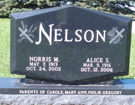 NELSON, NORRIS M. - Barnes County, North Dakota | NORRIS M. NELSON - North Dakota Gravestone Photos
