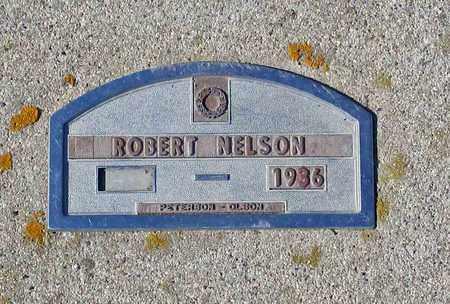 NELSON, ROBERT - Barnes County, North Dakota | ROBERT NELSON - North Dakota Gravestone Photos