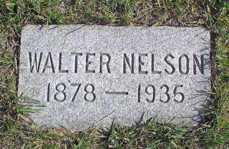 NELSON, WALTER - Barnes County, North Dakota | WALTER NELSON - North Dakota Gravestone Photos