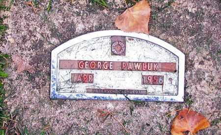 PAWLUK, GEORGE - Barnes County, North Dakota | GEORGE PAWLUK - North Dakota Gravestone Photos