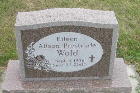 WOLD, EILEEN ALISON - Barnes County, North Dakota | EILEEN ALISON WOLD - North Dakota Gravestone Photos