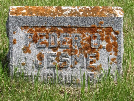JESME, PEDER O. - Bottineau County, North Dakota | PEDER O. JESME - North Dakota Gravestone Photos