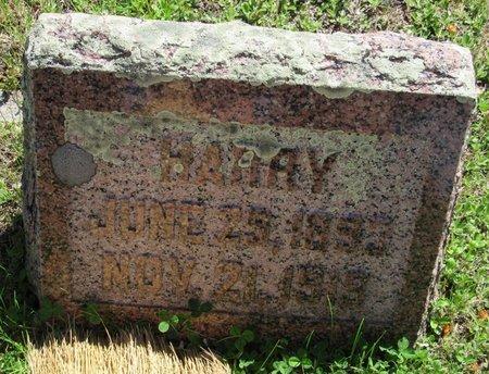 JOHNSON, HARRY - Bottineau County, North Dakota | HARRY JOHNSON - North Dakota Gravestone Photos