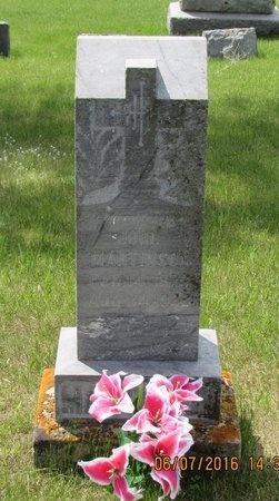 MARTINSON, JOHN - Bottineau County, North Dakota   JOHN MARTINSON - North Dakota Gravestone Photos