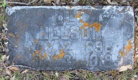 NELSON, OLE - Bottineau County, North Dakota | OLE NELSON - North Dakota Gravestone Photos