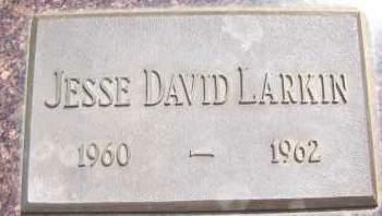 LARKIN, JESSE DAVID - Bowman County, North Dakota   JESSE DAVID LARKIN - North Dakota Gravestone Photos