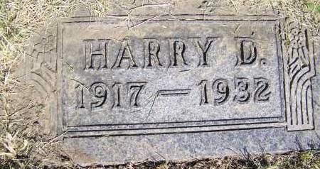SHEEDY, HARRY D. - Bowman County, North Dakota   HARRY D. SHEEDY - North Dakota Gravestone Photos