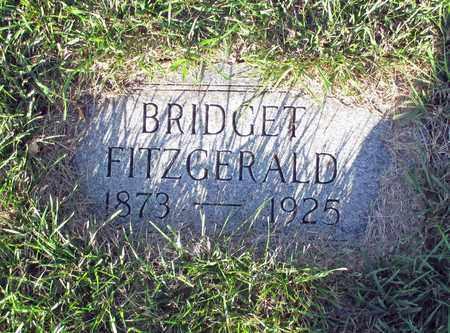 FITZGERALD, BRIDGET - Cass County, North Dakota | BRIDGET FITZGERALD - North Dakota Gravestone Photos