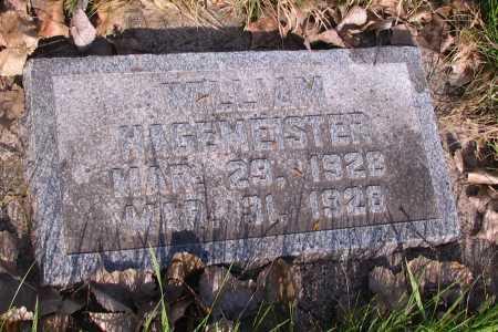 HAGEMEISTER, WILLIAM - Cass County, North Dakota | WILLIAM HAGEMEISTER - North Dakota Gravestone Photos