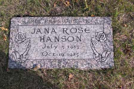HANSON, JANA ROSE - Cass County, North Dakota | JANA ROSE HANSON - North Dakota Gravestone Photos