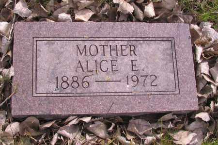 HODGSON, ALICE E. - Cass County, North Dakota | ALICE E. HODGSON - North Dakota Gravestone Photos
