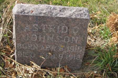 JOHNSON, ASTRID C. - Cass County, North Dakota | ASTRID C. JOHNSON - North Dakota Gravestone Photos