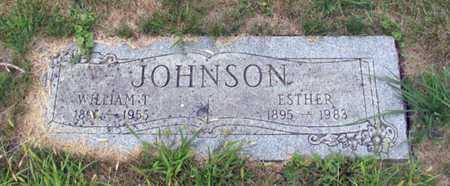 JOHNSON, WILLIAM T. - Cass County, North Dakota   WILLIAM T. JOHNSON - North Dakota Gravestone Photos