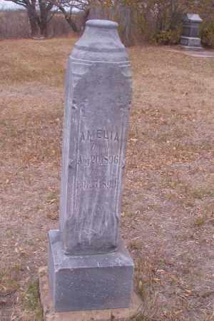 MARKEY, AMELIA - Cass County, North Dakota   AMELIA MARKEY - North Dakota Gravestone Photos