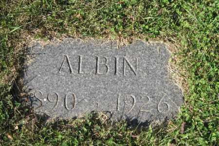 NELSON, ALBIN - Cass County, North Dakota | ALBIN NELSON - North Dakota Gravestone Photos