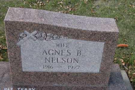NELSON, AGNES B. - Cass County, North Dakota | AGNES B. NELSON - North Dakota Gravestone Photos