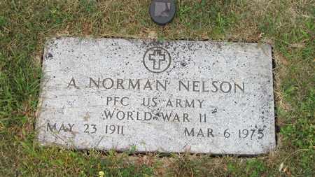 NELSON, A. NORMAN - Cass County, North Dakota | A. NORMAN NELSON - North Dakota Gravestone Photos