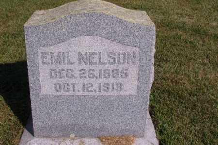 NELSON, EMIL - Cass County, North Dakota | EMIL NELSON - North Dakota Gravestone Photos
