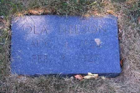NELSON, OLA - Cass County, North Dakota | OLA NELSON - North Dakota Gravestone Photos