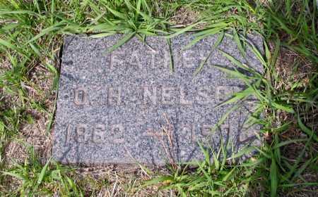NELSON, O. H. - Cass County, North Dakota | O. H. NELSON - North Dakota Gravestone Photos