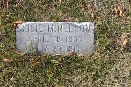 NELSON, SUSIE M. - Cass County, North Dakota | SUSIE M. NELSON - North Dakota Gravestone Photos