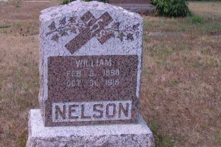 NELSON, WILLIAM - Cass County, North Dakota | WILLIAM NELSON - North Dakota Gravestone Photos