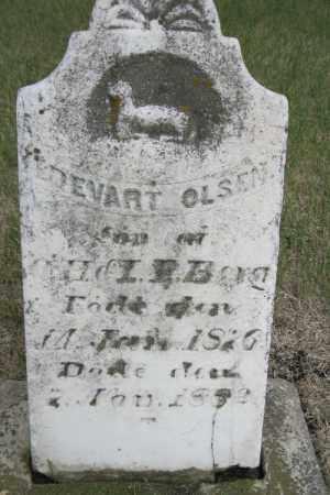 OLSEN, EDEVART - Cass County, North Dakota   EDEVART OLSEN - North Dakota Gravestone Photos
