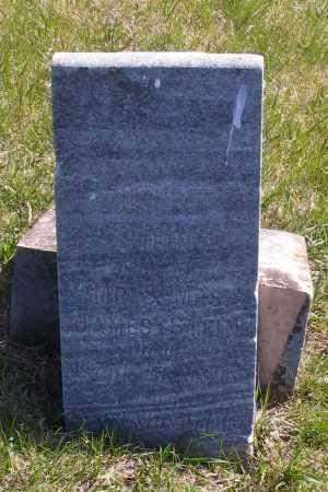 STEIN, ALBERT - Cass County, North Dakota | ALBERT STEIN - North Dakota Gravestone Photos