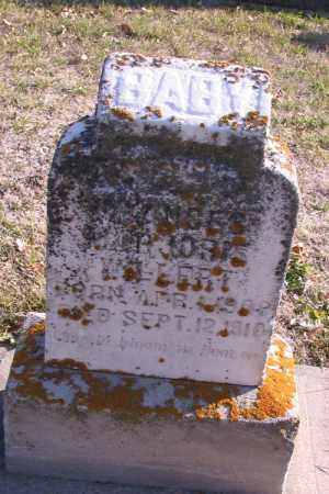 WILLERT, BABY - Cass County, North Dakota   BABY WILLERT - North Dakota Gravestone Photos