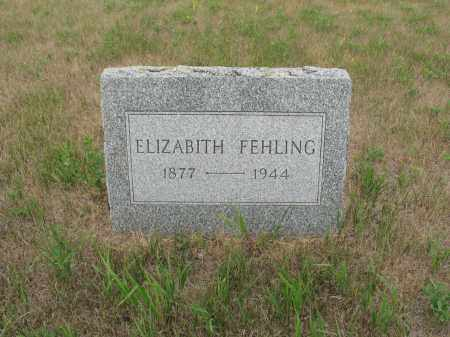 BOESLER FEHLING 301, ELIZABITH - Dickey County, North Dakota | ELIZABITH BOESLER FEHLING 301 - North Dakota Gravestone Photos