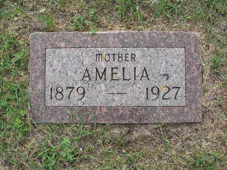 FLAGEL 031, AMELIA - Dickey County, North Dakota   AMELIA FLAGEL 031 - North Dakota Gravestone Photos