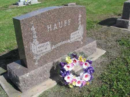 HAUFF 032, DAVID M. - Dickey County, North Dakota   DAVID M. HAUFF 032 - North Dakota Gravestone Photos