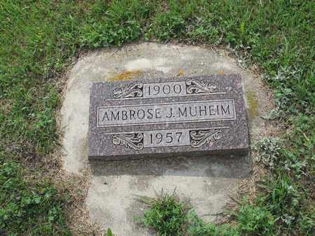 MUHEIM 043, AMBROSE JOE - Dickey County, North Dakota | AMBROSE JOE MUHEIM 043 - North Dakota Gravestone Photos