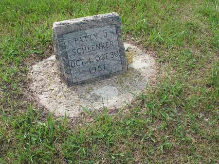 SCHLENKER 227, PATTY J. - Dickey County, North Dakota | PATTY J. SCHLENKER 227 - North Dakota Gravestone Photos
