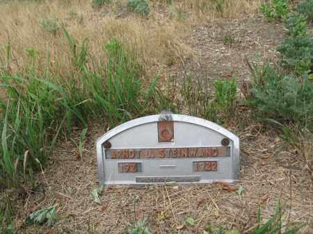 STEINWAND 295, ARNDT LUDWIG - Dickey County, North Dakota | ARNDT LUDWIG STEINWAND 295 - North Dakota Gravestone Photos