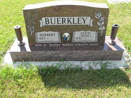 WOEHL BUERKLEY 116, ALICE - LaMoure County, North Dakota | ALICE WOEHL BUERKLEY 116 - North Dakota Gravestone Photos
