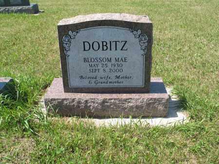 KOSANKE DOBITZ 571, BLOSSOM MAE - LaMoure County, North Dakota   BLOSSOM MAE KOSANKE DOBITZ 571 - North Dakota Gravestone Photos