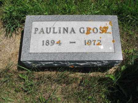 GROSZ 452, PAULINA - LaMoure County, North Dakota | PAULINA GROSZ 452 - North Dakota Gravestone Photos