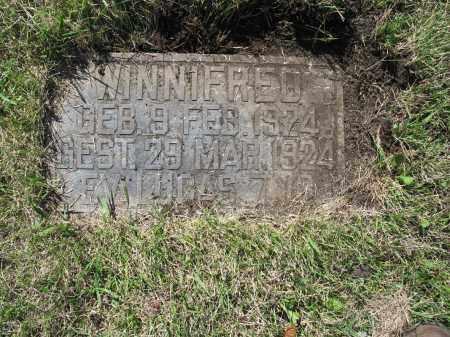HEIDINGER 105, WINNIFRED - LaMoure County, North Dakota | WINNIFRED HEIDINGER 105 - North Dakota Gravestone Photos