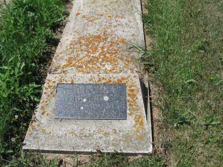 HILLIUS 480, CHRISTINA - LaMoure County, North Dakota | CHRISTINA HILLIUS 480 - North Dakota Gravestone Photos