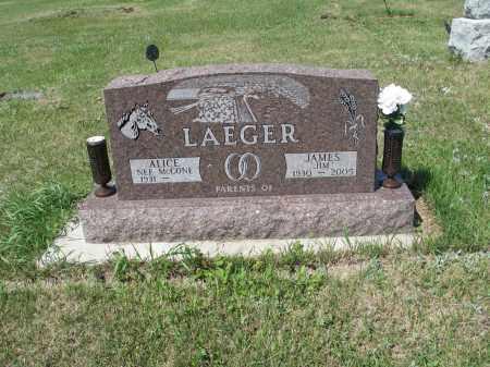 LAEGER 385, ALICE - LaMoure County, North Dakota | ALICE LAEGER 385 - North Dakota Gravestone Photos