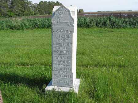 LARSON 001, DINA A. - LaMoure County, North Dakota | DINA A. LARSON 001 - North Dakota Gravestone Photos