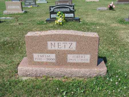 NETZ 271, ALBERT - LaMoure County, North Dakota | ALBERT NETZ 271 - North Dakota Gravestone Photos