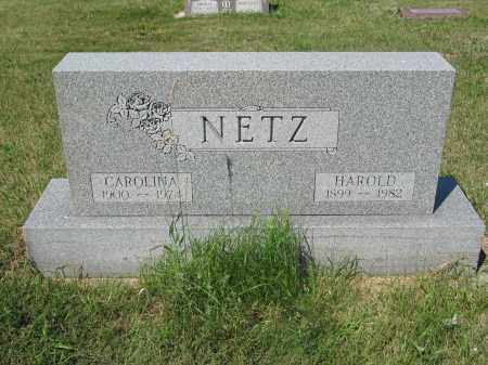 NETZ 284, CAROLINA - LaMoure County, North Dakota   CAROLINA NETZ 284 - North Dakota Gravestone Photos